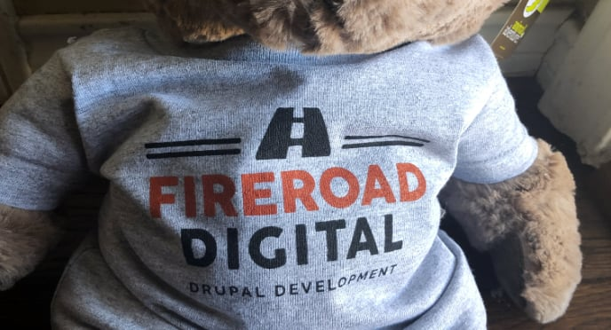 Teddy bear wearing FireRoad Digital t-shirt